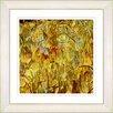 "Studio Works Modern ""Tulip Garden"" by Zhee Singer Framed Giclee Print Fine Art in Golden"