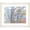 "Studio Works Modern ""Winter Branches"" by Zhee Singer Framed Fine Art Giclee Print"