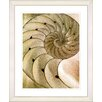 "Studio Works Modern ""Sea Cambrian - Sepia"" by Zhee Singer Framed Fine Art Giclee Print"