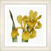 Studio Works Modern Vintage Botanical No. 46W by Zhee Singer Framed Giclee Print Fine Wall Art