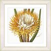 Studio Works Modern Vintage Botanical No. 15W by Zhee Singer Framed Giclee Print Fine Wall Art