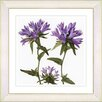 Studio Works Modern Vintage Botanical No. 16W by Zhee Singer Framed Giclee Print Fine Wall Art