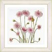 Studio Works Modern Vintage Botanical No. 39W by Zhee Singer Framed Giclee Print Fine Wall Art