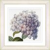 Studio Works Modern Vintage Botanical No. 18W by Zhee Singer Framed Giclee Print Fine Wall Art
