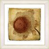 Studio Works Modern Vintage Botanical No. 20cA by Zhee Singer Framed Giclee Print Fine Wall Art