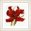 Studio Works Modern Vintage Botanical No. 21W by Zhee Singer Framed Giclee Print Fine Wall Art