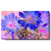 """Studio Works Modern """"May Daisies"""" Gallery Wrapped by Zhee Singer Painting Print on Canvas"""