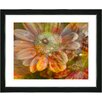 "Studio Works Modern ""Orange Glory Daisy Flower"" by Zhee Singer Framed Fine Art Giclee Painting Print"