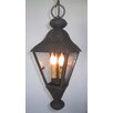 Laura Lee Designs La Jolla Hanging Lantern