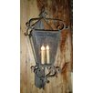 <strong>Laura Lee Designs</strong> Siena Wall Lantern
