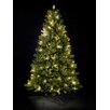 Hometime Snowtime 6.3' Green Pre-Lit Rocky Mountain Artificial Christmas Tree with 350 Clear Lights