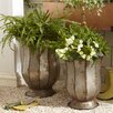 Birch Lane Hanley Urns