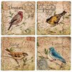 <strong>4 Piece Song Birds Travertine Ambiance Coaster Set</strong> by Thirstystone