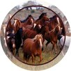 <strong>Thirstystone</strong> Horse Collage Occasions Coaster (Set of 4)