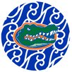 Thirstystone University of Florida Swirls Collegiate Coaster (Set of 4)