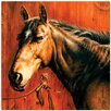 Thirstystone Horse Portrait Occasions Trivet