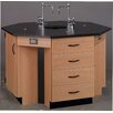 <strong>Science Workstation</strong> by Stevens ID Systems