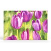 Artefx Decor Spring Tulips Painting Print on Canvas