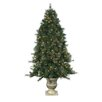 <strong>Sterling Inc.</strong> 6' Green Hard Needle Dover Pine Christmas Tree with 300 Clear Lights with Pot and Stand