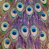 """Salty & Sweet """"Peacock Feathers"""" Canvas Art"""