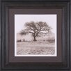 Art Effects Willow Tree Framed Photographic Print