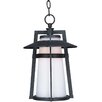 <strong>Calistoga EE 1 Light Outdoor Hanging Lantern</strong> by Wildon Home ®