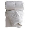 Down Inc. Classic Polyester Filled Winter Weight Duvet Insert