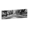 Andrew Brown The Avenue Framed Canvas Print in Black/White Artist Lane