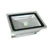 <strong>50W 10V-28V DC LED Flood Light</strong> by Tech Lights