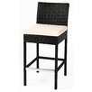 Caluco LLC Dijon Barstool with Cushion