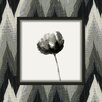 Obvious Place Posey Ebony Flower Painting Print on Canvas in Black and White