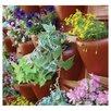 <strong>PlantScape Terra Vertical Garden</strong> by Palram