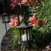 <strong>Starlite Garden and Patio Torche Co.</strong> Solar Lantern with Shepherds Hook Glass