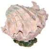 <strong>Ocean of Abundance Shell Cookie Jar</strong> by Kaldun & Bogle