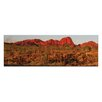 Artist Lane Afterburn by Andrew by Andrew Brown Photographic Print on Canvas