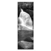 <strong>Artist Lane</strong> Lady's Bath Falls by Andrew Brown Photographic Print on Canvas in Black and White