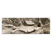 Artist Lane The Refuge by Andrew Brown Photographic Print on Canvas