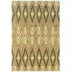 Oriental Weavers Anastasia Abstract Area Rug