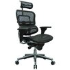 Eurotech Seating Ergohuman High-Back Mesh Managers Chair with Arms