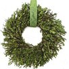Dried Flowers and Wreaths LLC Boxwood Wreath with Hanger