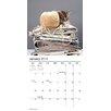 TFPublishing 2015 Kittens Mini Calendar