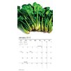 TFPublishing 2015 Organic Kitchen Mini Calendar