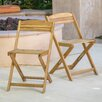 Home Loft Concept Lanai Folding Arm Chair (Set of 2)