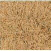 <strong>Super Shag Apricot Rug</strong> by Dalyn Rug Co.