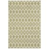 Capel Rugs Elsinore Pistachio Green Pueblo Indoor/Outdoor Area Rug