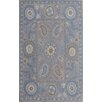 Dynamic Rugs Sapphire Grey Area Rug