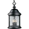 <strong>Progress Lighting</strong> Ashmore Old World Style 3 Light Outdoor Hanging Lantern