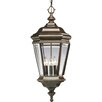 <strong>Progress Lighting</strong> Crawford Cast 4 Light Outdoor Hanging Lantern