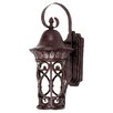 <strong>Wildon Home ®</strong> Aficianado Dark Sky 1 Light Outdoor Wall Lantern