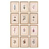 <strong>Uttermost</strong> Flower of The Month by Grace Feyock 12 Piece Framed Painting Print Set